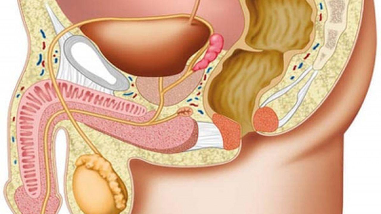 Tratamente naturiste pentru prostata inflamata