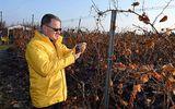 Ministrul Agriculturii, Adrian Oros, confirmat cu coronavirus. Cum se simte guvernantul PNL