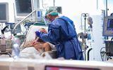 Incidenţa coronavirus 4 decembrie. Judeţele Constanţa şi Ilfov se menţin peste rata de infectare 7 la mia de locuitori
