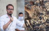 """Decizie radicală. Dominic Fritz închide grădina zoo din Timișoara: """"Animalele nu pot trăi în aceste habitate"""""""