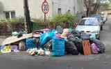 Clotilde Armand refuză să plătească facturile la gunoi