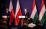 Ungaria şi Polonia, ameninţate cu excluderea din planul de relansare post-pandemie. Ultimatumul dat de Comisia Europeană