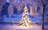 Sărbătorile de iarnă 2020 aduc vreme schimbătoare. Cum va fi de Crăciun şi Revelion