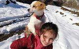 Impresionant! O fetiță și-a cărat cățelul în spate până la veterinar, prin zădadă, pe o distanță de doi kilometri