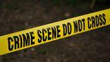 Caz tragic! Polițist criminalist, împușcat mortal de soție. Femeia și-a luat apoi viața cu aceeași armă