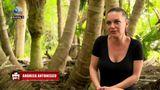 """Survivor România 2021: """"Colegii spun că Andreea Antonescu e Alexandra Stan doi"""""""