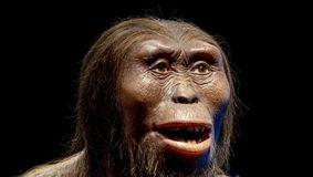 Cine sunt strămoșii noștri. Descoperirea schimbă istoria