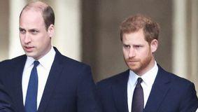William îl acuză pe Harry că a pus mai presus faima decât familia