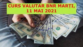 Curs valutar BNR marți, 11 mai 2021. Leul explodează față de dolar! Care sunt cele mai noi cotații