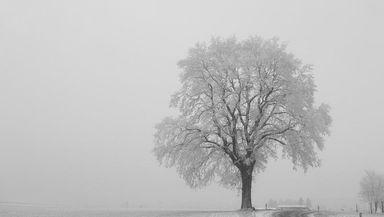 PROGNOZA METEO 24 noiembrie. Vreme rece, cu temperaturi de până la MINUS 11 grade, cu ceaţă şi chiciură