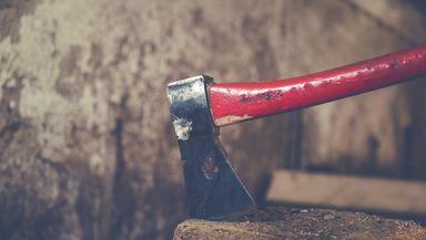 Pădurar lovit cu un topor în cap de un bărbat care tăia lemne ilegal. Ce se întâmplă cu vinovatul
