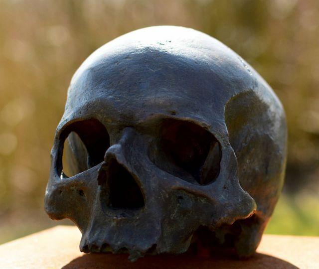Descoperire macabră la Iaşi. Craniu uman, găsit de un copil pe câmp